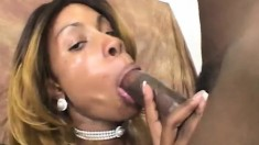 Buxom Ebony Model Eats Big Dick And Is Nailed By The Photographer