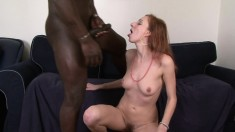 Cuckold Husband Interracial Cumshot