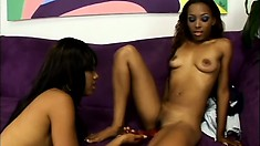 Gorgeous black babes undress before getting busy on the couch